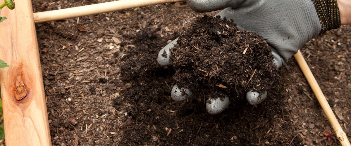 Comment réaliser son Compost? 1/3